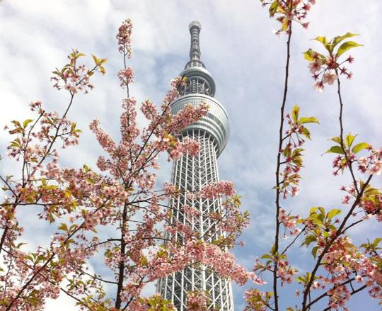 東京観光をもっと気軽に